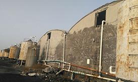 绥中海参养殖基地